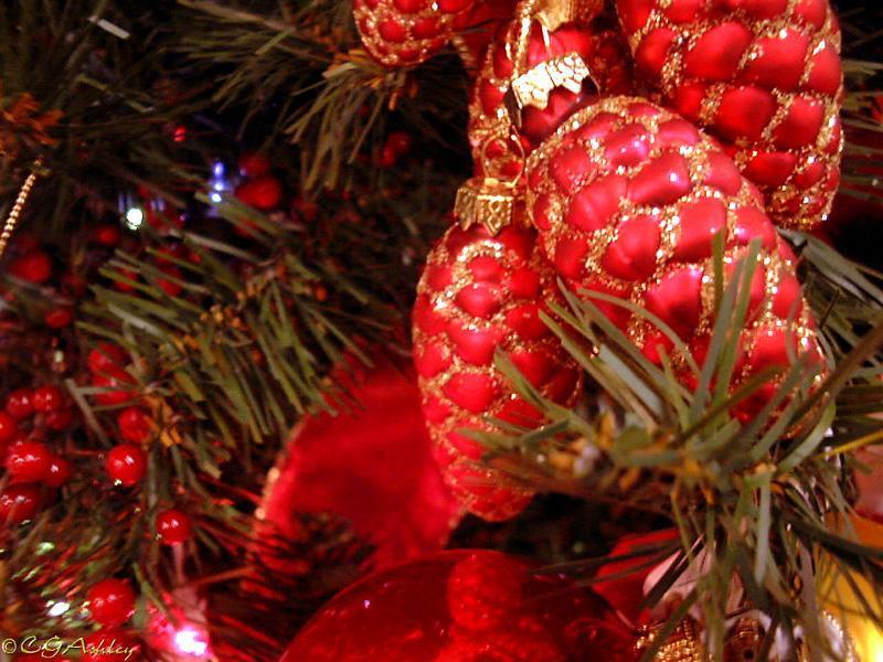 Image du Blog isamel.centerblog.net